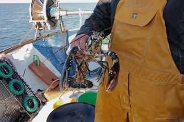 alessandra antonini pesca bonifacio corsica 10